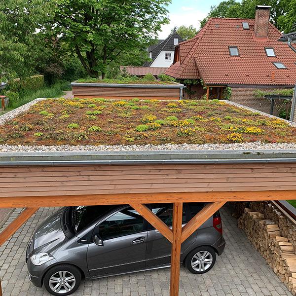 Carport Ausstattungselement Dachbegrünung