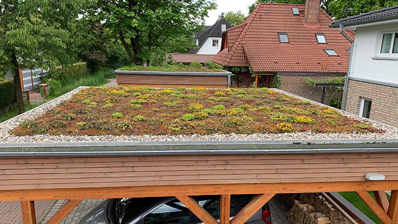 Carport Dacheindeckung: Dachbegrünung